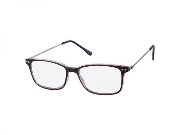 dina leesbril bruin